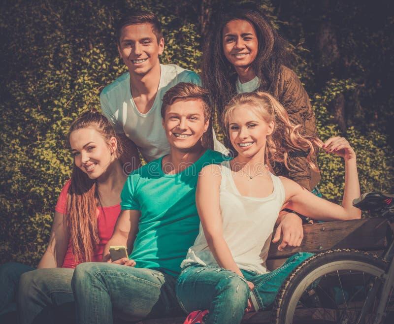 Wielo- grupa etnicza sporty nastoletni w parku zdjęcia royalty free