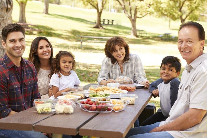 Wielo- pokolenie rodzina picnicking w parkowym uśmiechu kamera zdjęcia stock