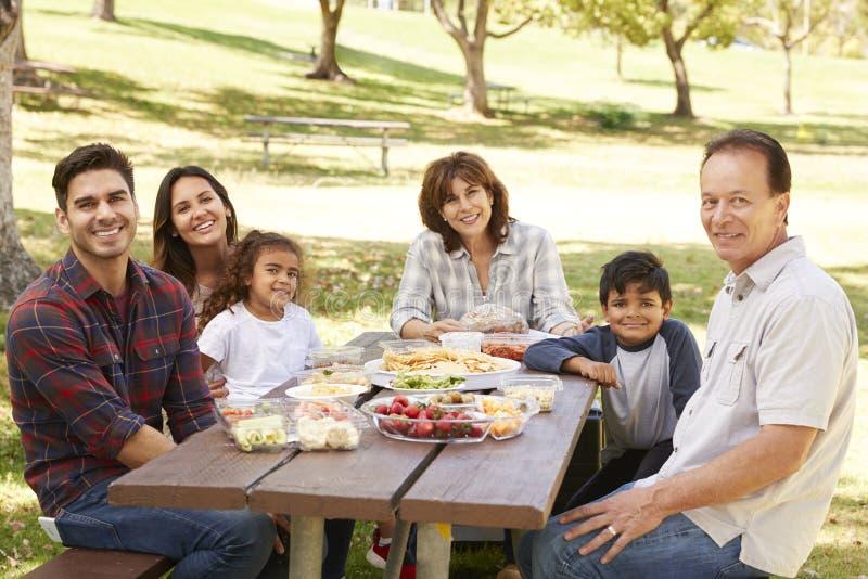 Wielo- pokolenie rodzina przy pinkinem w parku, portret zdjęcie royalty free