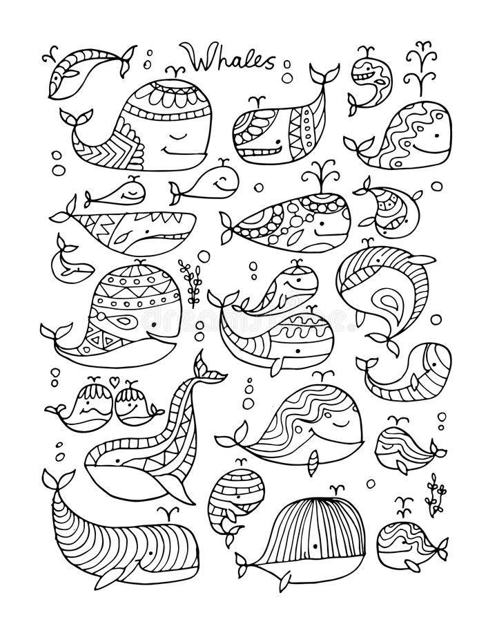 Wieloryb kolekcja, nakreślenie dla twój projekta ilustracja wektor