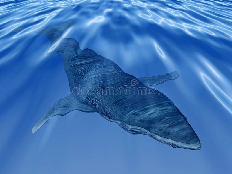 Wieloryb w głębokim błękitnym morzu ilustracja wektor