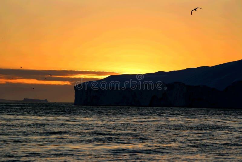 Wielorybi dopatrywanie w Ilulissat północy fotografia stock