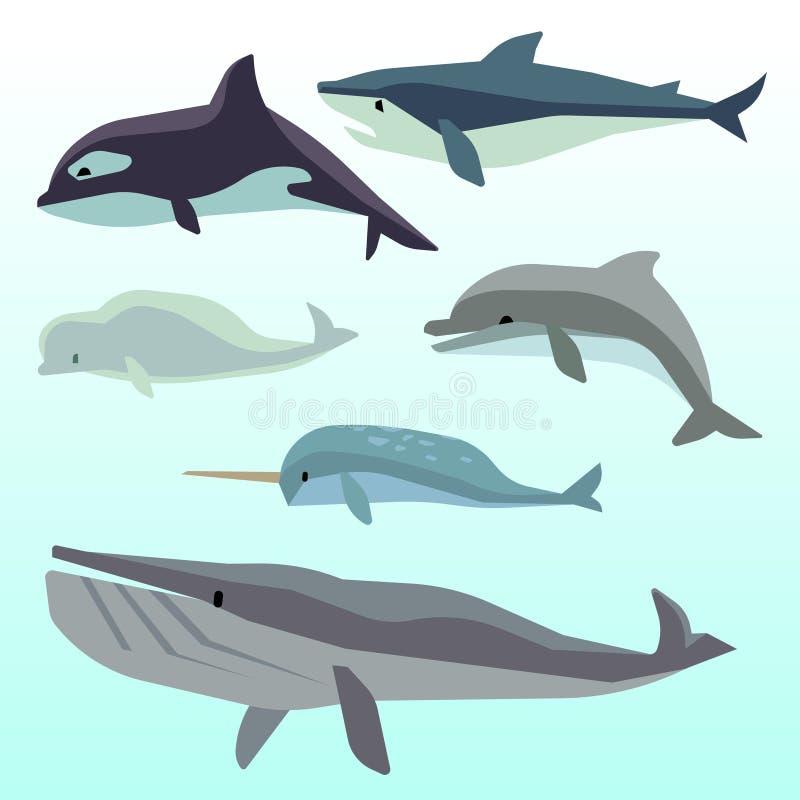 Wieloryby i delfiny, morski podwodny ssak, oceanów zwierząt wektoru płaski set ilustracji
