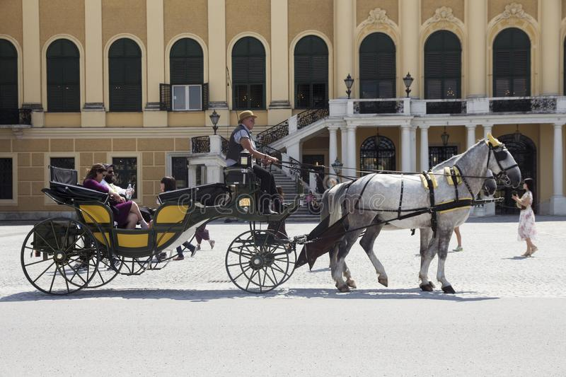 Wien, Österreich - 6. Juli 2018: Schonbrunn-Palast Schloss Schönbrunn und die Pferde, die Kampfwagen ziehen stockfotografie