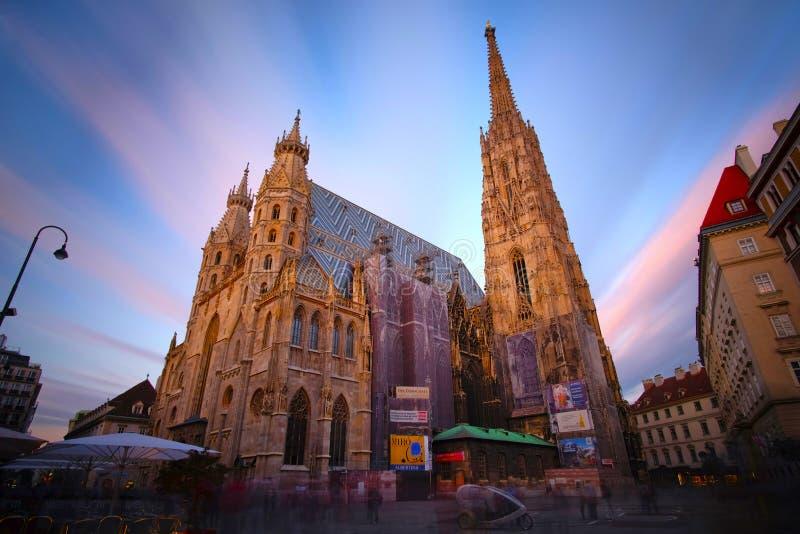 Wien Österrike - St Stephan Cathedral royaltyfri foto