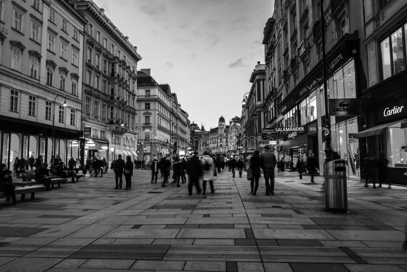 Wien centrum på natten royaltyfri fotografi