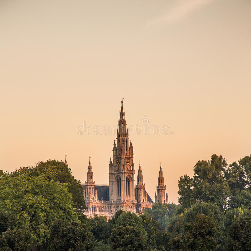 Wien stadshus royaltyfria bilder