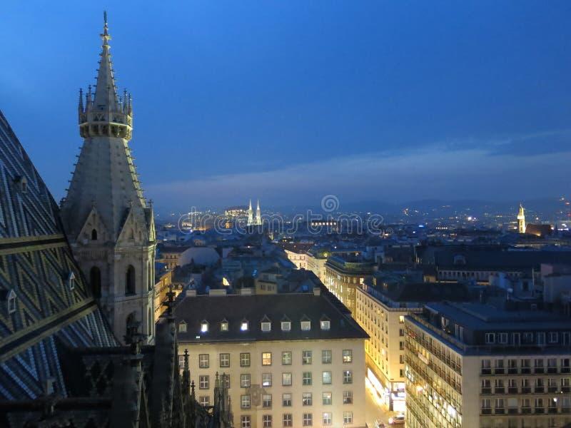 Wien-Stadt nachts lizenzfreies stockbild