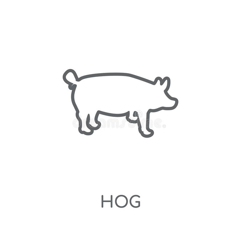 Wieprz liniowa ikona Nowożytny konturu wieprza logo pojęcie na białym backgr ilustracji