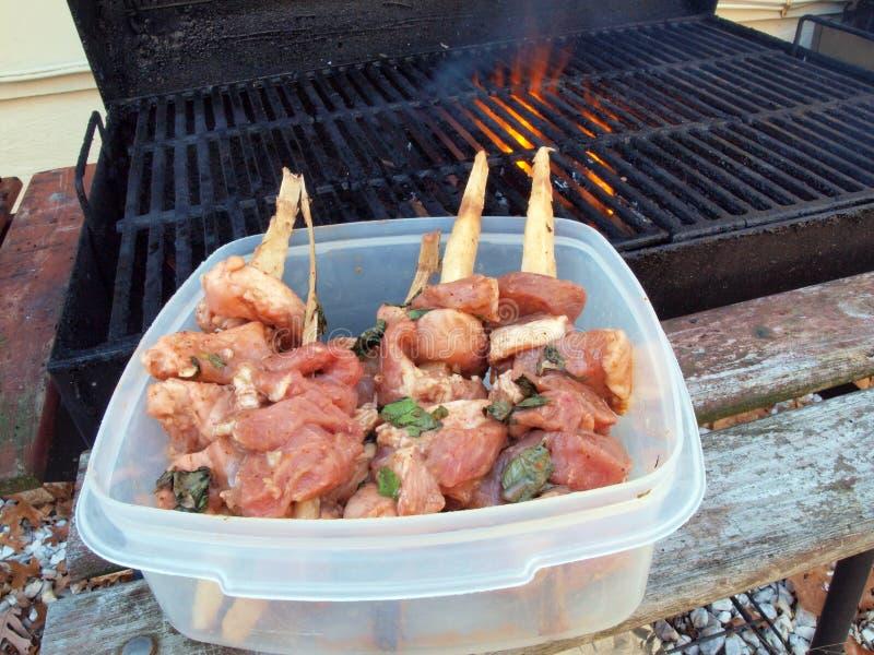 Download Wieprzowin kababs obraz stock. Obraz złożonej z grill - 28964445