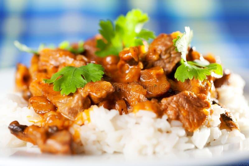 Wieprzowina curry z ryż zdjęcia royalty free