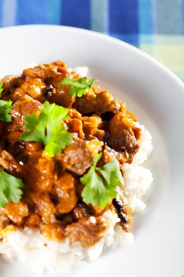 Wieprzowina curry z ryż obrazy royalty free