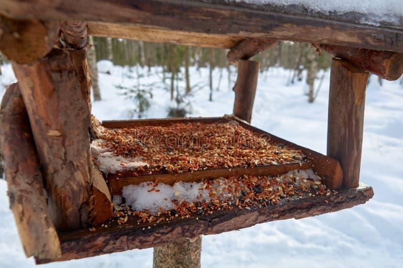 Wieprzowina grill na grillbird dozowniku w lesie na otwartej przestrzeni zdjęcie stock