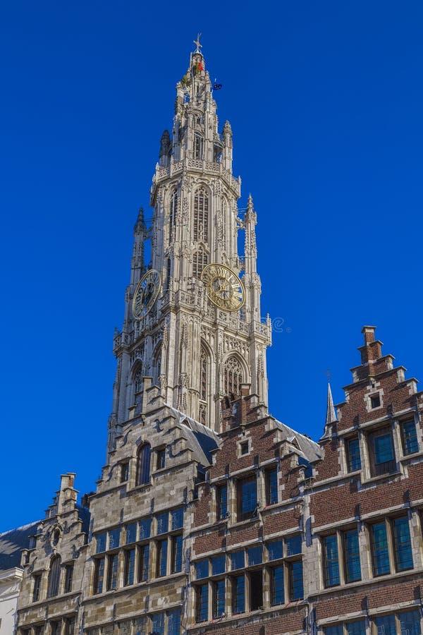 Wierza katedra Antwerp katedra Nasz dama zdjęcia royalty free