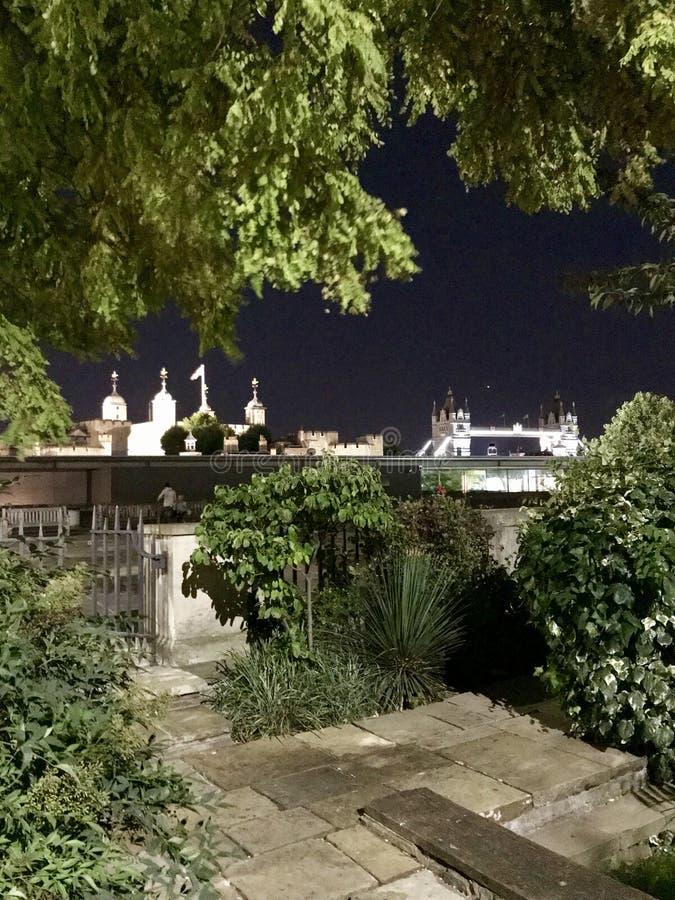 Wierza Londyn nocą fotografia royalty free