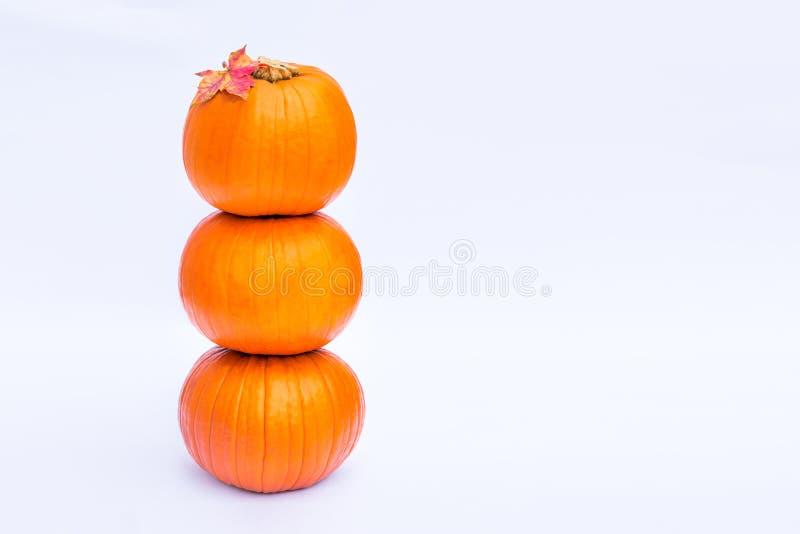 Wierza Trzy brogował mini banie z spadku liściem klonowym na wierzchołku na białym tle odizolowywającym Jesień wakacje, żniwo, On zdjęcie stock