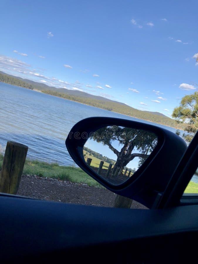 Wierzbowy gaju jezioro zdjęcie royalty free