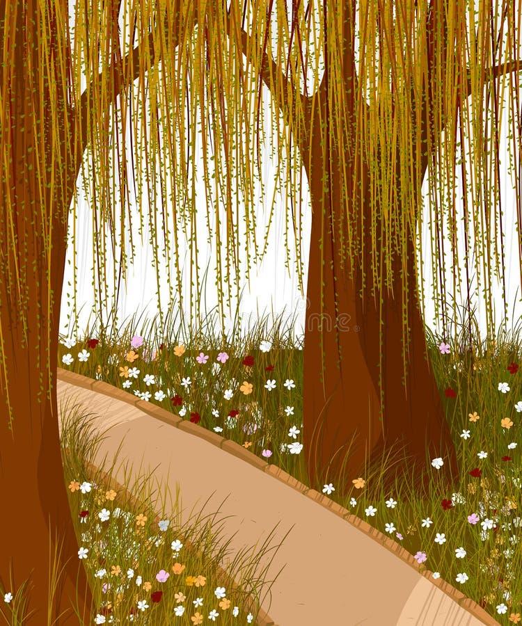 Wierzbowy lasowy tło