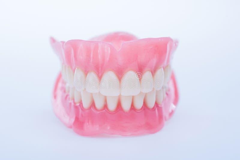 Wierzch i niscy dentures na lekkim tle fotografia stock
