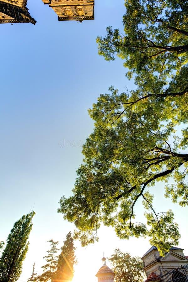 Wierzchołek Piękna stara bazylika święty, republika czech i niektóre otaczający drzewa Peter, Saint Paul, Vysehrad i Praga, zdjęcie stock