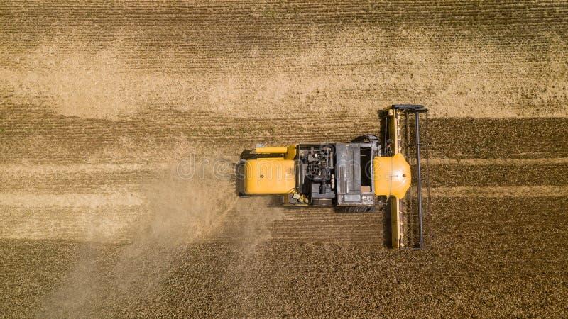 Wierzchołka puszka widok syndykat pracuje na wielkim pszenicznym polu fotografia stock