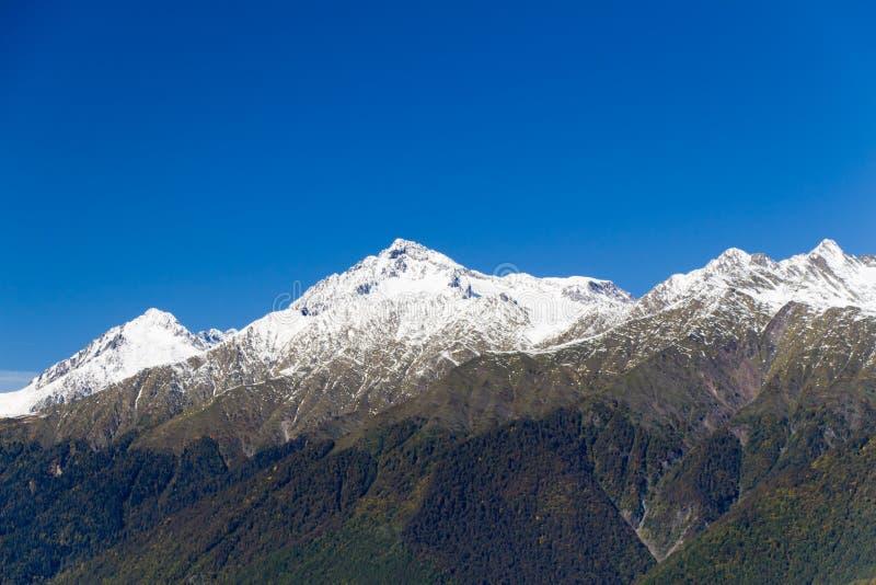 Wierzchołki góry zakrywać z śniegiem Skłony są thic zdjęcie stock