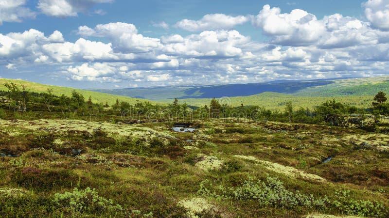 Download Wierzchołek góra zdjęcie stock. Obraz złożonej z kolorowy - 57663842