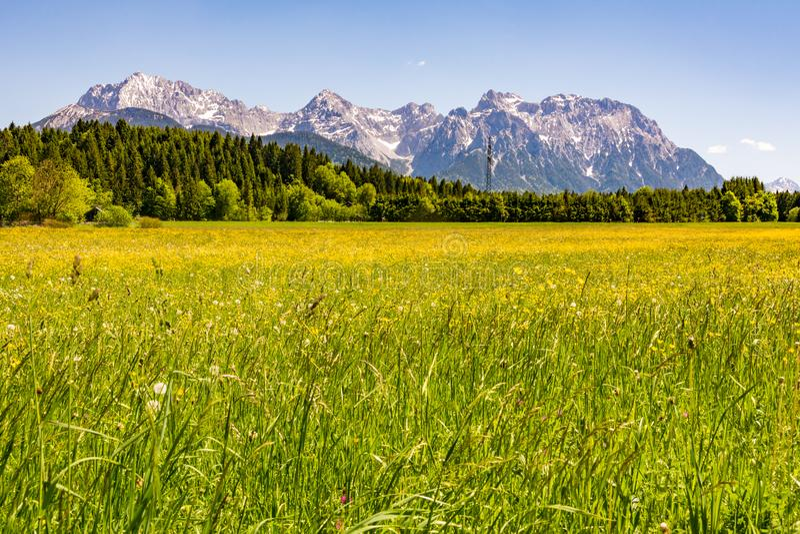 Wiese in den Alpen von Bayern lizenzfreie stockfotografie