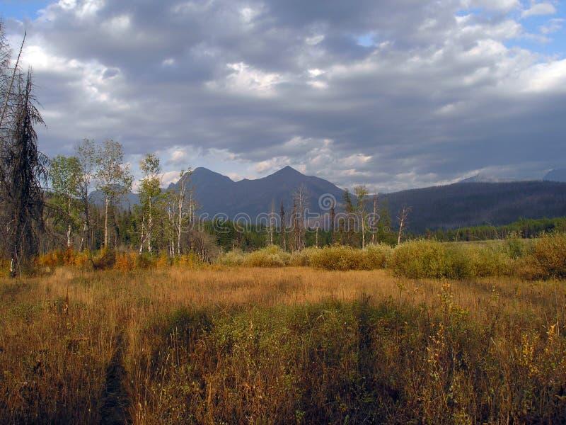 Wiese, Sumpf und Berge lizenzfreie stockbilder