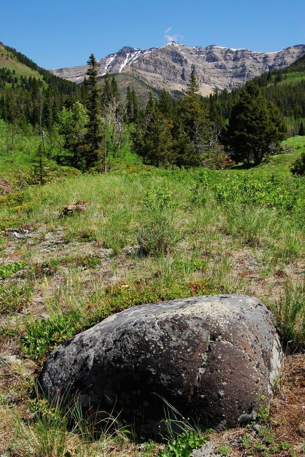 Wiesen zu den Bergen stockfotos