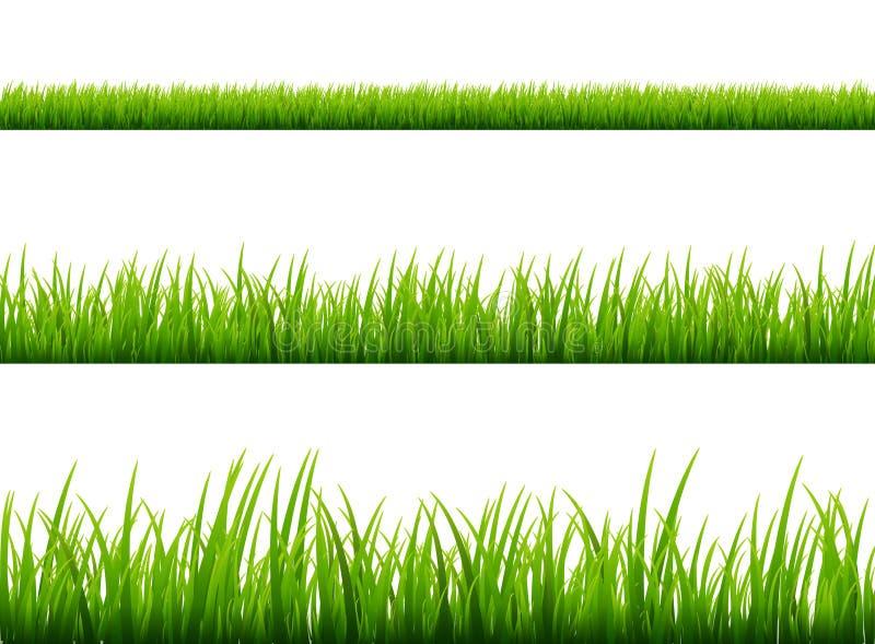 Wiesengrenzvektormuster des grünen Grases Frühlings- oder Sommerbetriebsfeldrasen Getrennt auf Weiß vektor abbildung