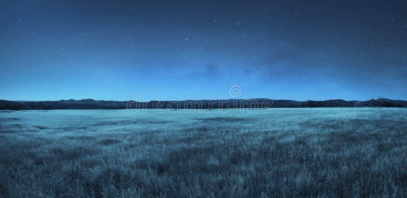 Wiesenlandschaft in der Nacht lizenzfreie stockfotografie