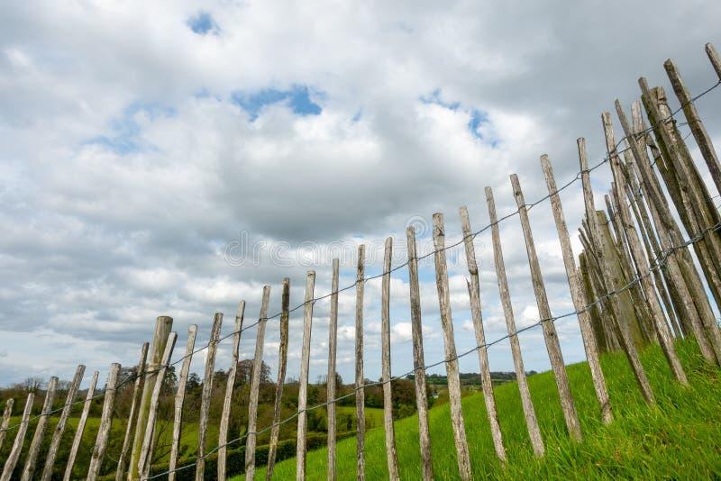 Wiesenzaun des grünen Grases in Irland lizenzfreie stockbilder