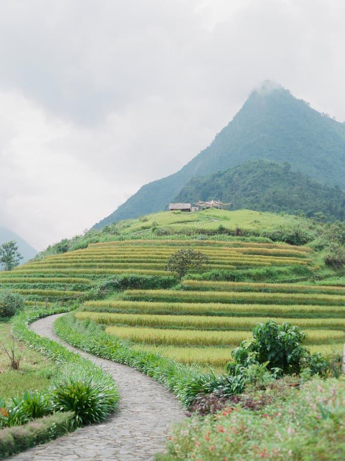 Wietnam fotografia royalty free