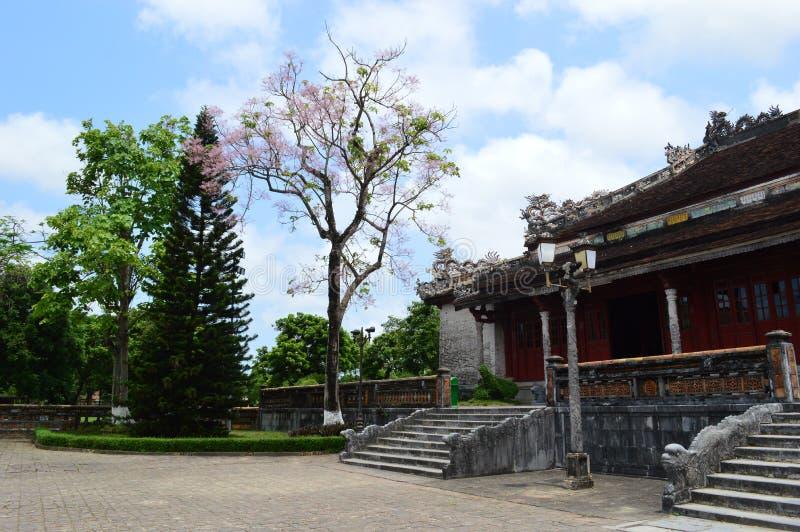 Wietnam - odcień - Wśrodku cytadeli - czereśniowy okwitnięcie i budynki obraz royalty free