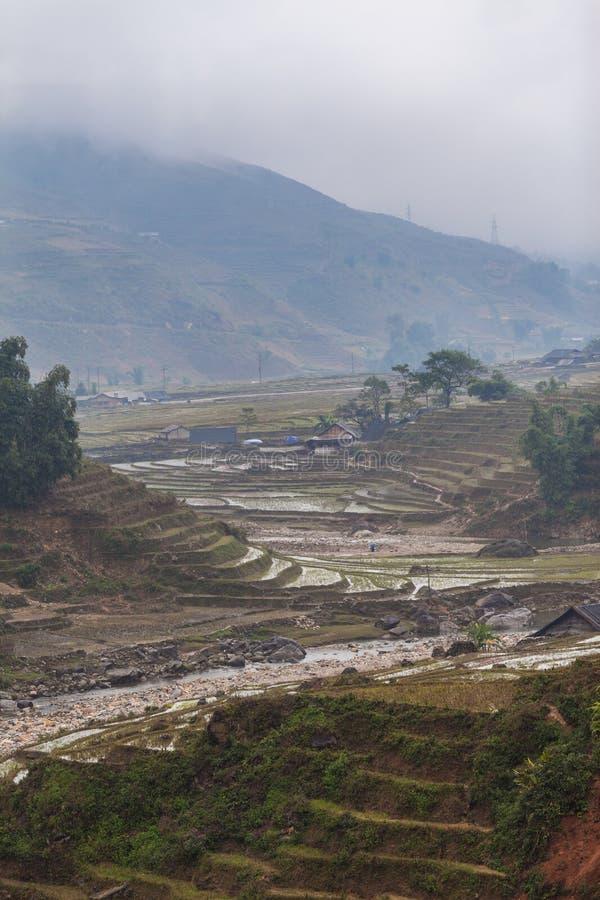 Wietnam, Sa Pa Krajobrazowy widok ryżowi tarasy obraz royalty free