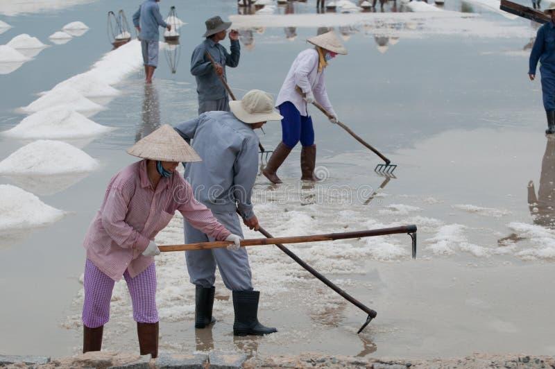 Wietnamscy pracownicy na słonym jeziorze zdjęcia stock