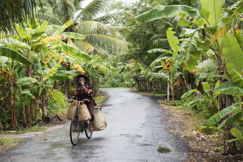 Wietnamska kobieta jedzie jej bicykl na wsi drodze w Mekong delcie zdjęcia royalty free