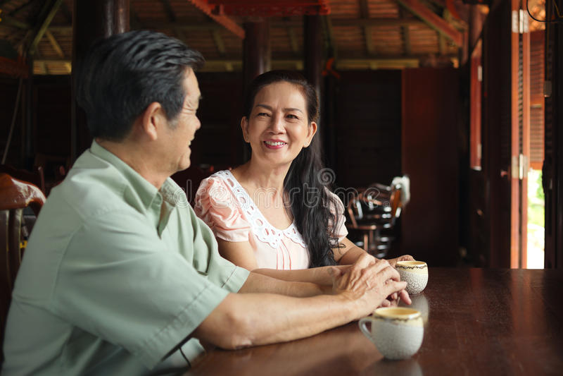 Wietnamska starsza para zdjęcie royalty free