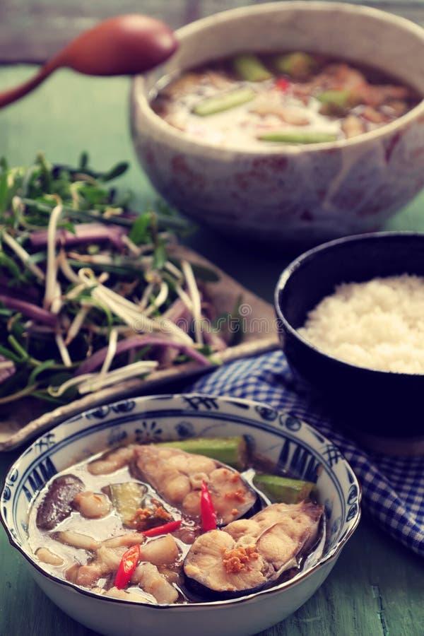Wietnamski jedzenie dla dziennego posiłku, mama kho zdjęcie stock