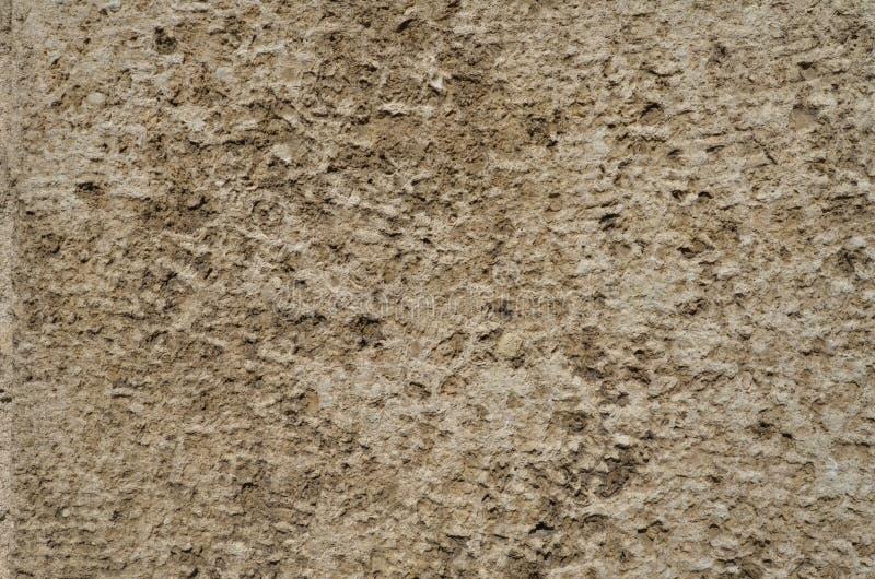 Wietrzeję textured jasnobrązową powierzchnię naturalny kamień obrazy royalty free
