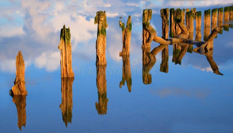 Wietrzeje bite drewniane poczty w odbijającej wodzie zdjęcia royalty free
