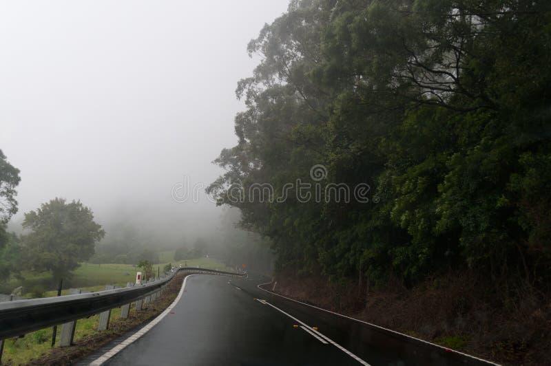 Wietrzna halna droga przy mgłą Niebezpieczna napędowych warunków metafora zdjęcie royalty free