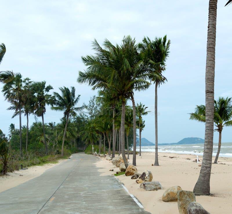 Wietrzna nabrzeżna droga na chmurnym dniu z palmami Pojęcie martwy sezon w kurorcie zdjęcia royalty free