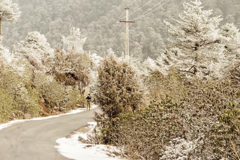 Wietrznego śnieżnego mgłowego śliskiego błotnistego płaskiego kroka himalajska halna droga w zimie Leh Manali autostrada, Jammu i zdjęcie royalty free