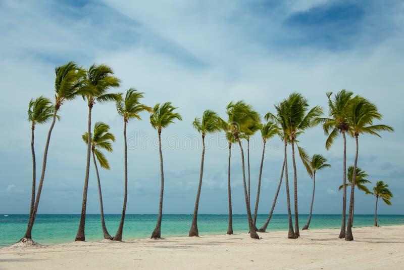 Wietrzny dzień w republice dominikańskiej zdjęcia stock