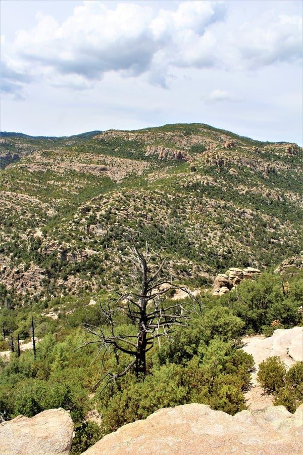 Wietrzny punkt Vista, góra Lemmon, Santa Catalina góry, Lincoln las państwowy, Tucson, Arizona, Stany Zjednoczone zdjęcie stock