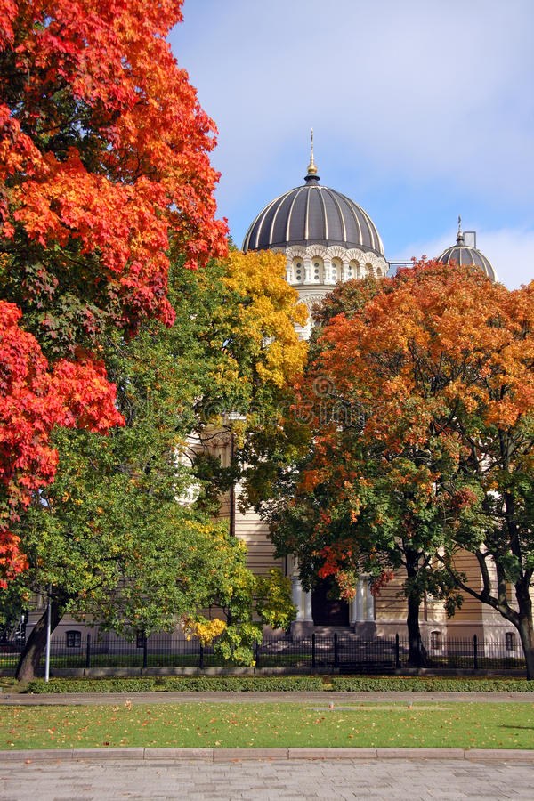 Download Wiew Of Cathedral Building Beyond Autumn Trees Stock Photo - Image: 11606736