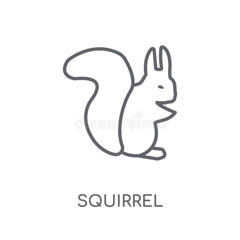 Wiewiórcza liniowa ikona Nowożytnego konturu logo Wiewiórczy pojęcie na wh ilustracji
