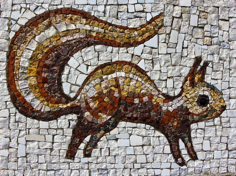 Wiewiórcza mozaika zdjęcie royalty free